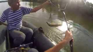 Семейная рыбалка ч.2