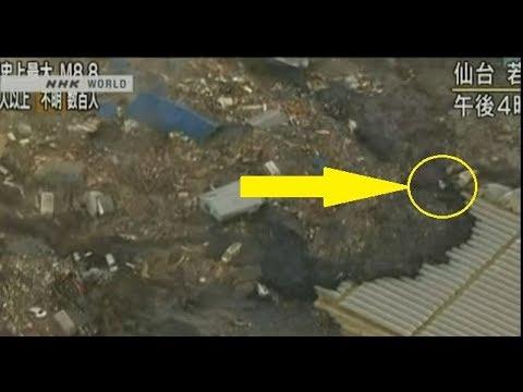 2nd  Creature  Japan Tsunami  2011