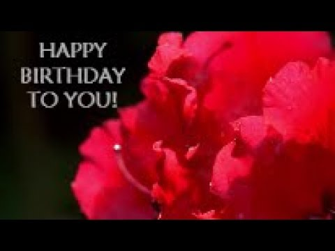 Delightful Happy Birthday Video Card - With Dancing Flowers 3