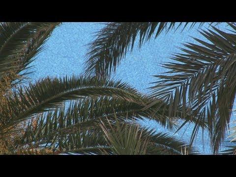 Globe TV - Tunesien Teil1
