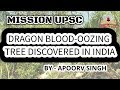Dragon blood oozing tree discovered in India | MISSION UPSC |  UPSC 2020 | STUDY IAS
