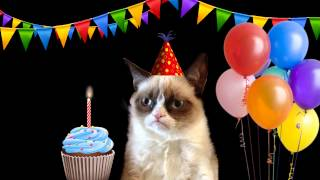 Happy Birthday Song by Grumpy Cat