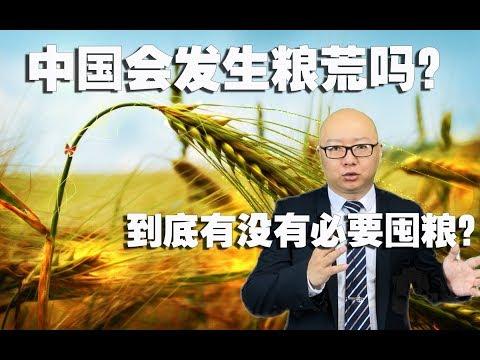 中国真的会发生粮荒吗?到底有没有必要囤粮?(2020-4-4第262期)