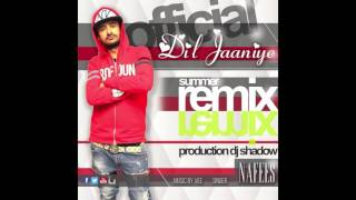 Official SUMMER REMIX - DIL JAANIYE by NAFEES - DJ SHADOW Mp3