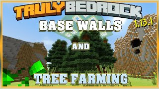 Truly Bedrock S1E51 Base Border & Tree Farm  | Minecraft Bedrock Edition SMP, MCPE, MCBE