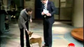11-17-1982 Letterman Dr. Ruth Westheimer, Andy Kaufman, Alec Baldwin