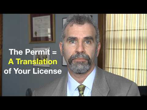 Can You Legally Drive in New York with an International Driver's License?