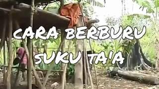 Video Berburu Pakai Sumpit ala Suku Ta'a download MP3, 3GP, MP4, WEBM, AVI, FLV September 2018
