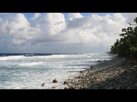 Climate impacts on Tuvalu and hopes for climate change negotiations