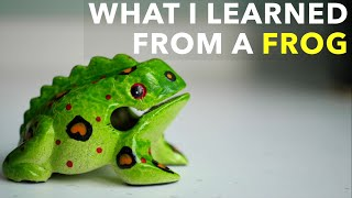 What I Learned From A Frog