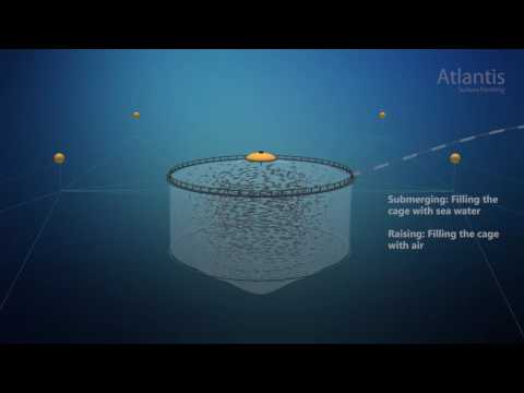 AKVA group - Fish farming - Subsea salmon farming Atlantis