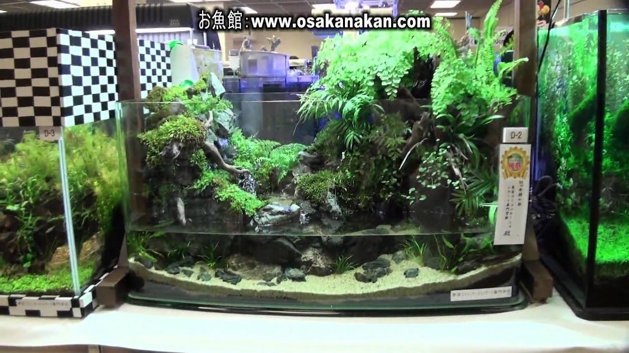 第33回 日本観賞魚フェア 水槽ディスプレイコンテ …