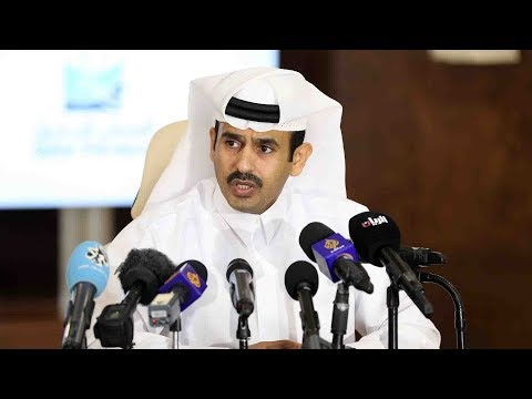 Qatar's new gas project to increase output to 100 mln tons per year