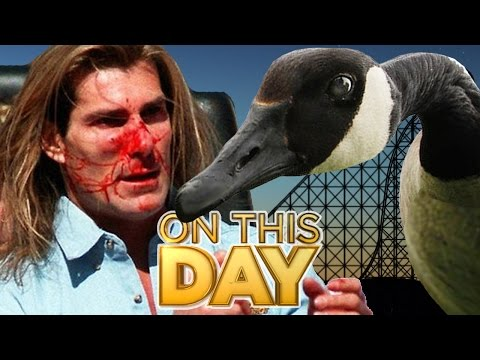 Stacy - Fabio Hit By Goose 20 Years Ago Today