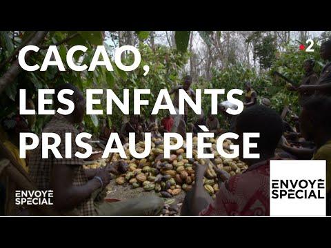 Envoyé spécial. Cacao : les enfants pris au piège - 10 janvier 2019 (France 2)