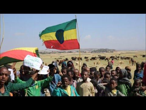 Hermella Wondimu Interview: 97.1 FM in Ethiopia