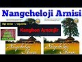 Nangcheloji Arnisi |Kanghon Amonjir|Karbi Song|Karbi music|Karbi video| Karbi new song