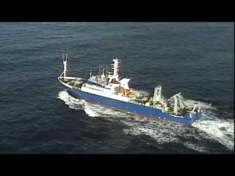 Southern Surveyor: Stories from onboard Australia's ocean research vessel