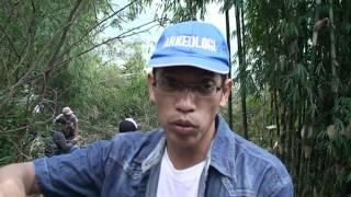 STRUKTUR TERASERING SISI TIMUR GUNUNG PADANG CIANJUR