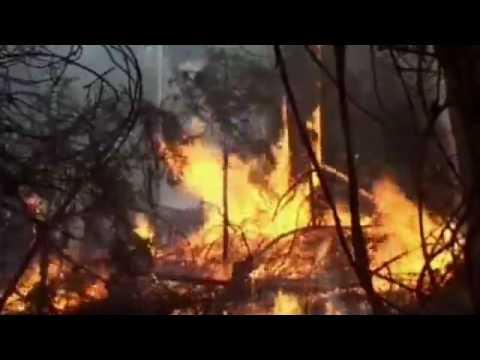 Georgia - Incendi nei boschi di Borjomi, nei pressi di Tbilisi