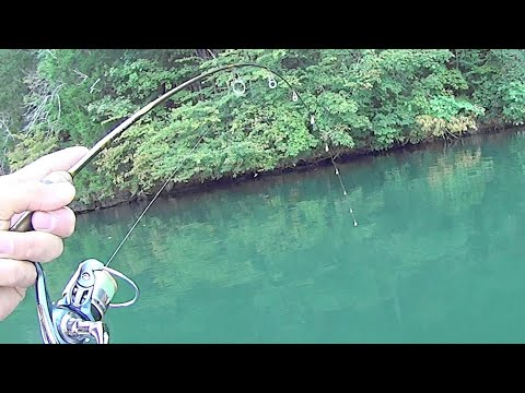 Ultralight Fishing For Smallmouth Bass And Bluegill