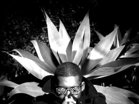 Flying Lotus-Mint Leaf Lullaby