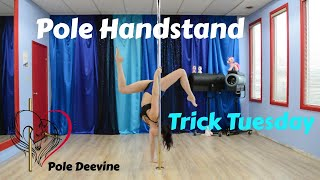Pole Trick Tuesday Tutorial - Pole Handstand Combo (master pole fitness)