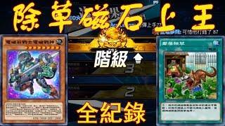 [遊戲王 duel links]除草磁石上王全記錄!打21場上王!勝率超過8成!