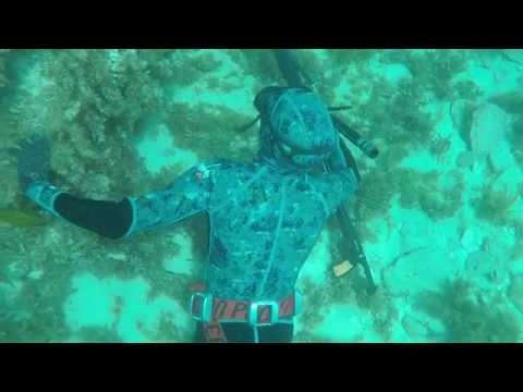 Weightless - Spearfishing and Freediving WA