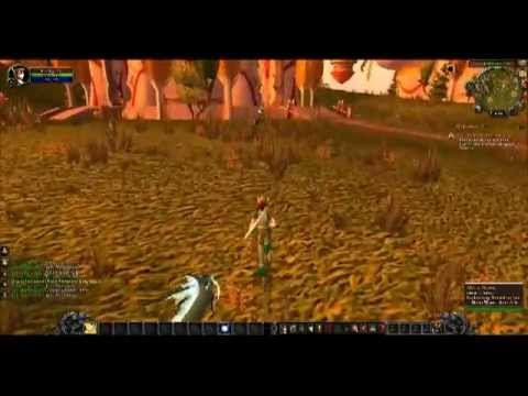 World Of Warcraft (blood elf - paladin) 1