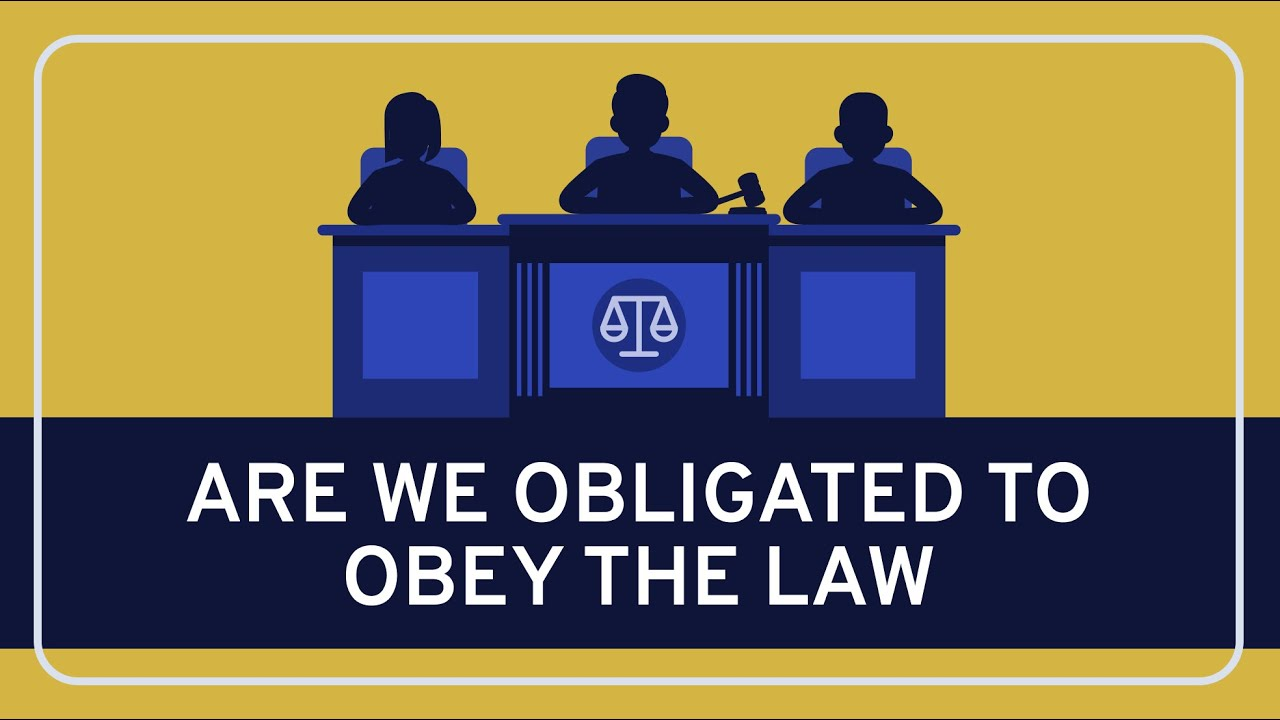 why do we obey the law essay