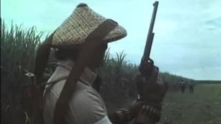 Филиппинский боевик