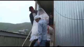 Необычная Дагестанская свадьба