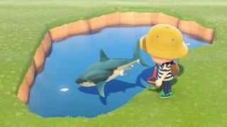 サメ釣れないところでサメ2時間くらい釣ってた。 釣れなかった。 実写→https://www.youtube.com/channel/UCV73oY5j3_nOiMyIgLQDc-w ...