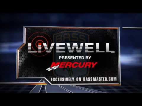 Livewell All-Star preview