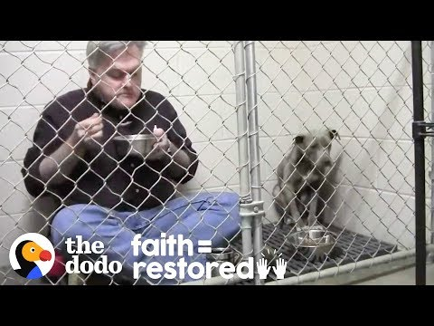 Vet Eats In Rescue Dog's Cage To Make Her Feel Safe. | The Dodo Faith = Restored
