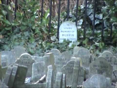 Image result for Hyde Park Pet Cemetery youtube
