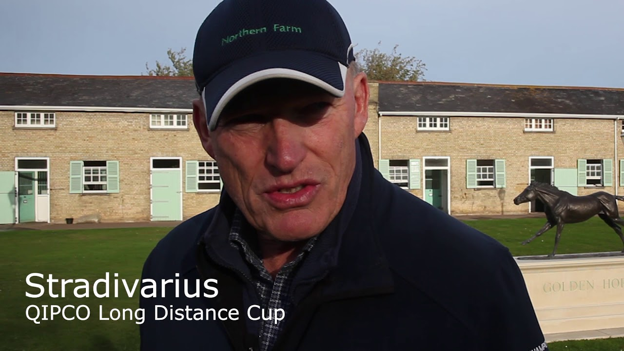 639b7bfc8265d2 John Gosden on his QIPCO British Champions Day contingent. - YouTube