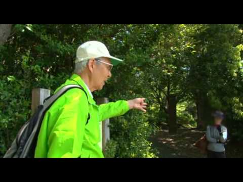 Tokyo's Natural Environment 2/3 - Conserve