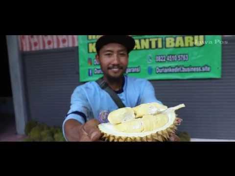 Jawa Pos Belah Durian Episode 20: Durian Podang Kediri