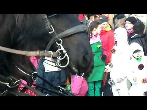 Öche Karneval 2012 -- Rosenmontag. Theaterstrasse. Pferdlippe