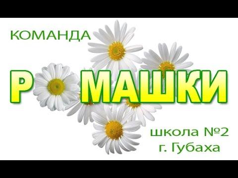 """""""РОМАШКИ"""" школа №2 г. Губаха"""