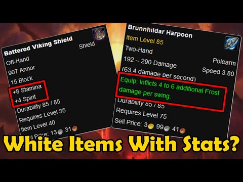 Why Were There White Items With Stats? (Warcraft Mini Facts)