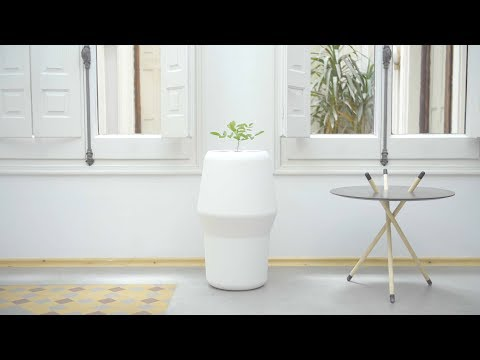 Grow a tree from a loved one's ashes, and the Bios Incube will keep it alive
