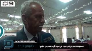 بالفيديو| نصار: الدولة ملزمة بشراء القطن ودفع الربح للمزارعين