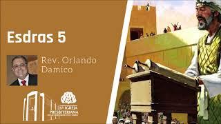 Esdras 5   Rev. Orlando Damico
