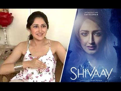 Sayyesha Saigal: People Should Watch ''Shivaay'' instead of ''Ae Dil Hai Mushkil'' | Shivaay | Interview