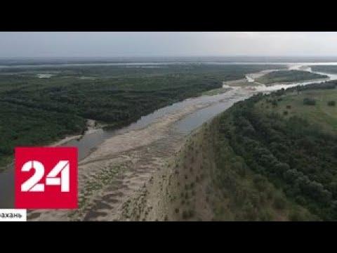Смотреть Куда уходит Волга? - Россия 24 онлайн