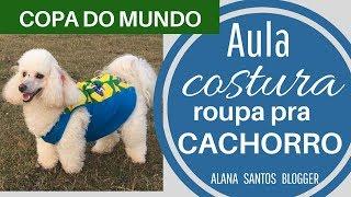 Costure uma roupa pet para COPA DO MUNDO Alana Santos Blogger
