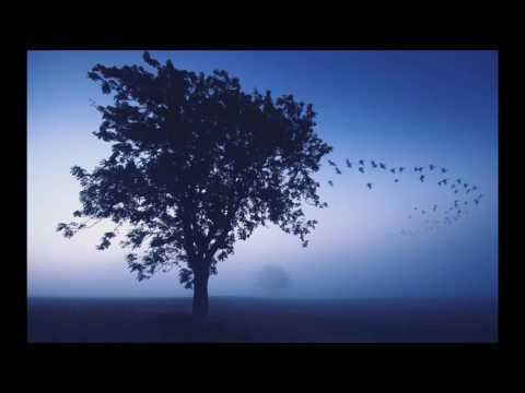 """""""В дни, когда рано темнеет..."""" - стихи Владимира Соколова, муз., исп. - Михаил Кукулевич."""
